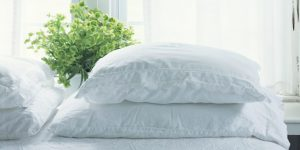 Clean Bed Pillows